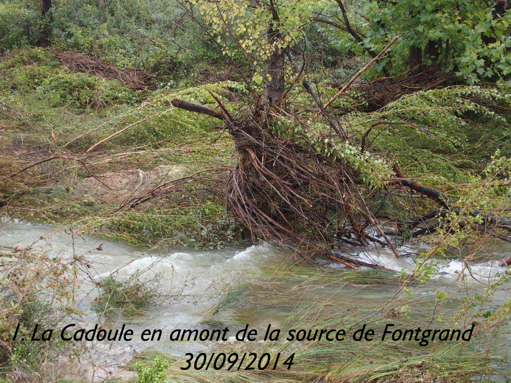 1-La Cadoule en amont de la source de Fontgrand